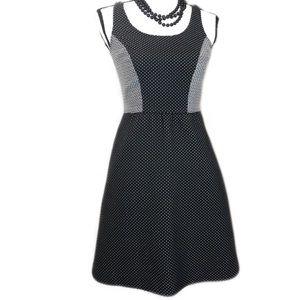 LIMITED Fit & Flare, Black & White Skater Dress